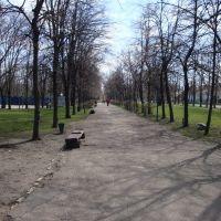 Городской парк, Купянск