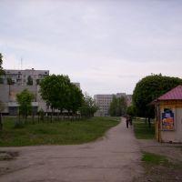 Смакоша возле Лицея №4, Лозовая