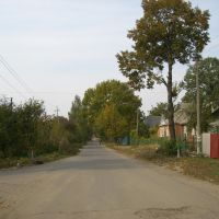 Ул.Гайдара, Люботин