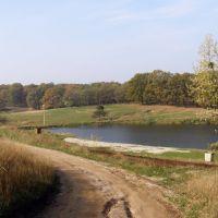 Первый пруд, Люботин