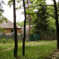 Домик в лесу, Люботин