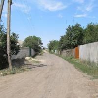 st. Kotsubynskogo (ул. Коцюбинского), Люботин
