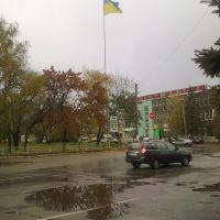 В центре Новой Водолаги (вид на флаг и герб), Новая Водолага