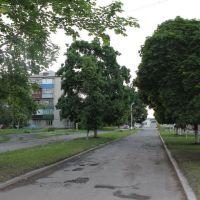 Дорога на завод, Новая Водолага