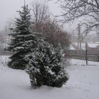 Снежная зима 2009-2010, Мерефа