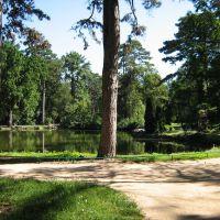 Озеро в парке (07.2008), Аскания-Нова