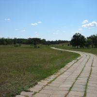 Дорожка в самой середине парка (07.2008), Аскания-Нова