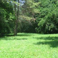 Сказочная поляна, Аскания-Нова