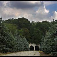 Вход в парк, Аскания-Нова