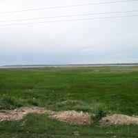 Белое озеро, камыш, Белозерка