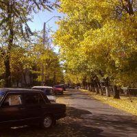 autumn in the city, Великая Александровка