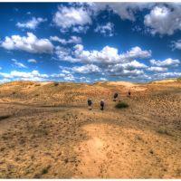Radensk Desert (Oleshky Sands), Великая Александровка