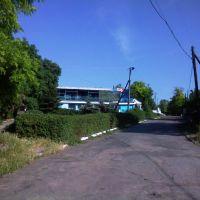 ул. Чкалова, Великая Лепетиха