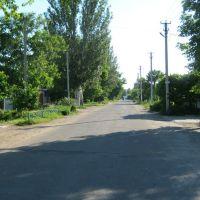 Улица Кирова, Геническ