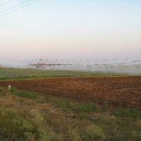 ►Поливка поля, Горностаевка