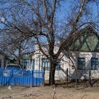 Дом Шевченко на улице Шевченко., Днепряны