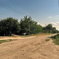 Улица Садовая (четвёртая улица), Днепряны