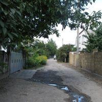 Улица Ярошенко, Днепряны