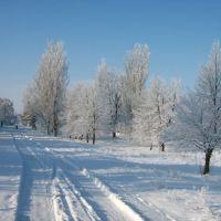 Зима на Советской улице (январь 2011), Калининское