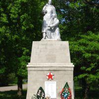 Памятник воинам односельчанам Калининска, Калининское