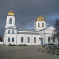 Свято-Покровский кафедральный сбор, Каховка