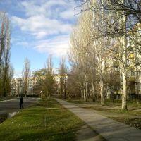 Каховська вулиця, Каховка