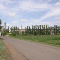 Больничка на окраине, Нижние Серогозы