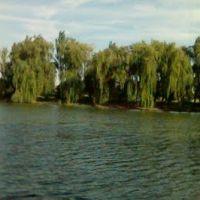 Старая панорама речки, Нижние Серогозы