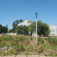 Дом культуры в зелени, Нижние Серогозы