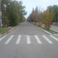 Suvorova street, Нововоронцовка