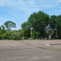 Площадь, Нововоронцовка