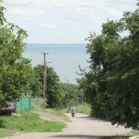 улица спускается к Днепру, Нововоронцовка