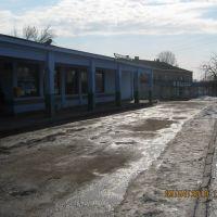 автовокзал, Нововоронцовка