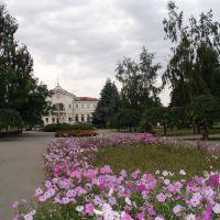 Привокзальная площадь, Херсон
