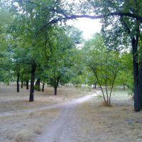 В парке Ленинского комсомола, Херсон