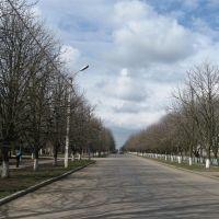 Улица Ленина., Чаплинка