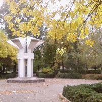 памятник воинам-интернационалистам, Чаплинка