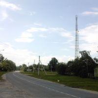 Дорога, Базалия
