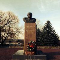 Pomnik Tarasu Szewczenku., Виньковцы