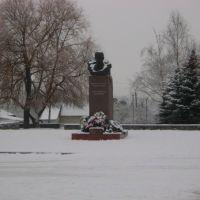 Центральна площа (памятник Т.Г. Шевченку), Виньковцы