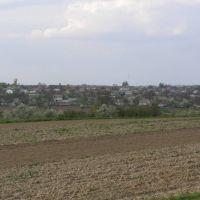 Майдан, Виньковцы