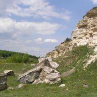 Скали, Виньковцы