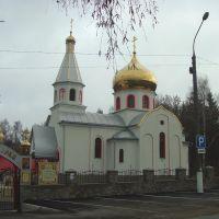 Свято-Воскресінський Храм, Виньковцы