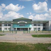 Польская школа, Городок