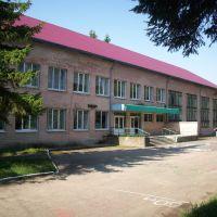 Школа №4, Городок