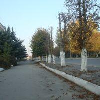 Городок, улица Шевченко, Городок