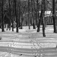 зимній парк, Грицев