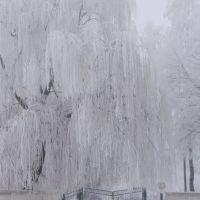 зима, Грицев