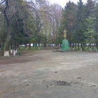 парк, Грицев