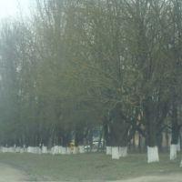Дорога в Дунаевцах на Новую Ушицу, Дунаевцы